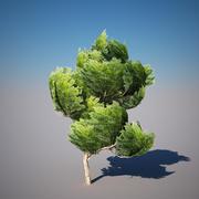 albero basso poli 3d model