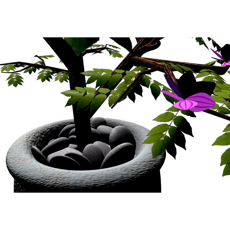 indoor plant royalty-free 3d model - Preview no. 3