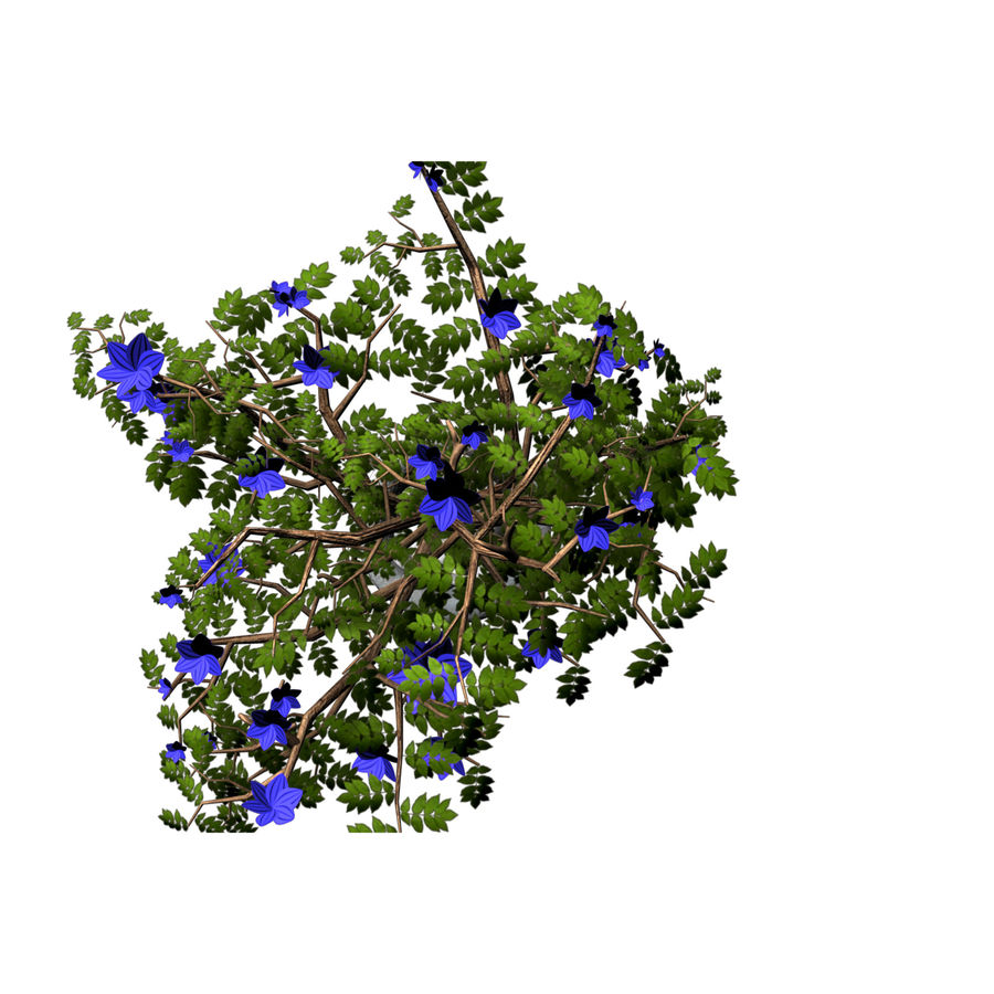 indoor plant royalty-free 3d model - Preview no. 2