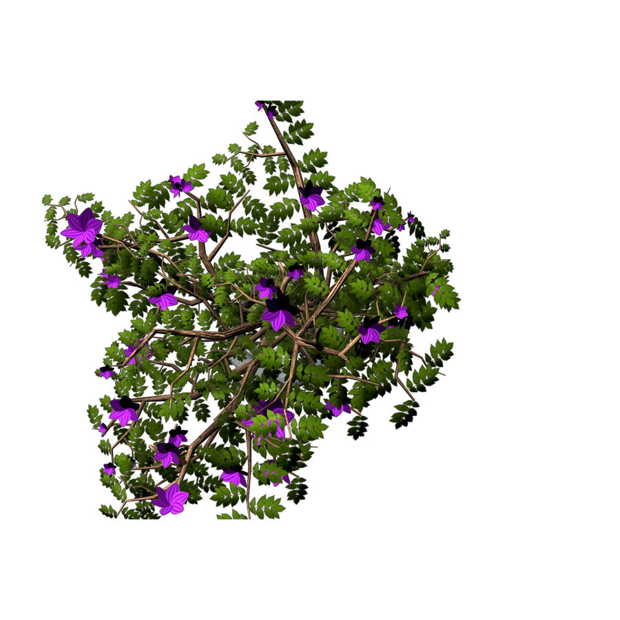 indoor plant royalty-free 3d model - Preview no. 11