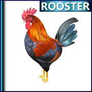 公鸡 3d model