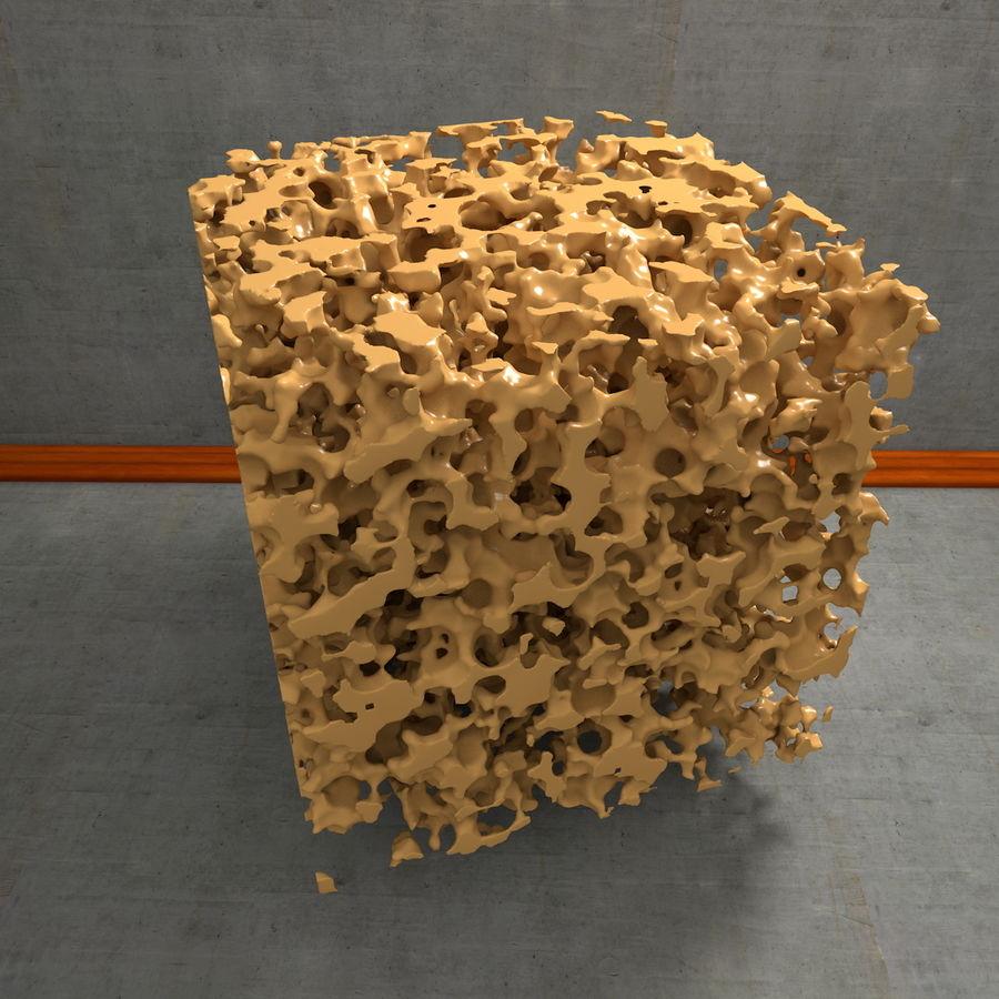 Structure en os spongieux en éponge royalty-free 3d model - Preview no. 19