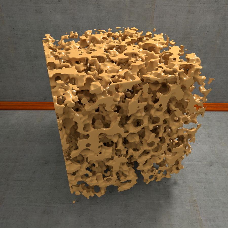 Structure en os spongieux en éponge royalty-free 3d model - Preview no. 14