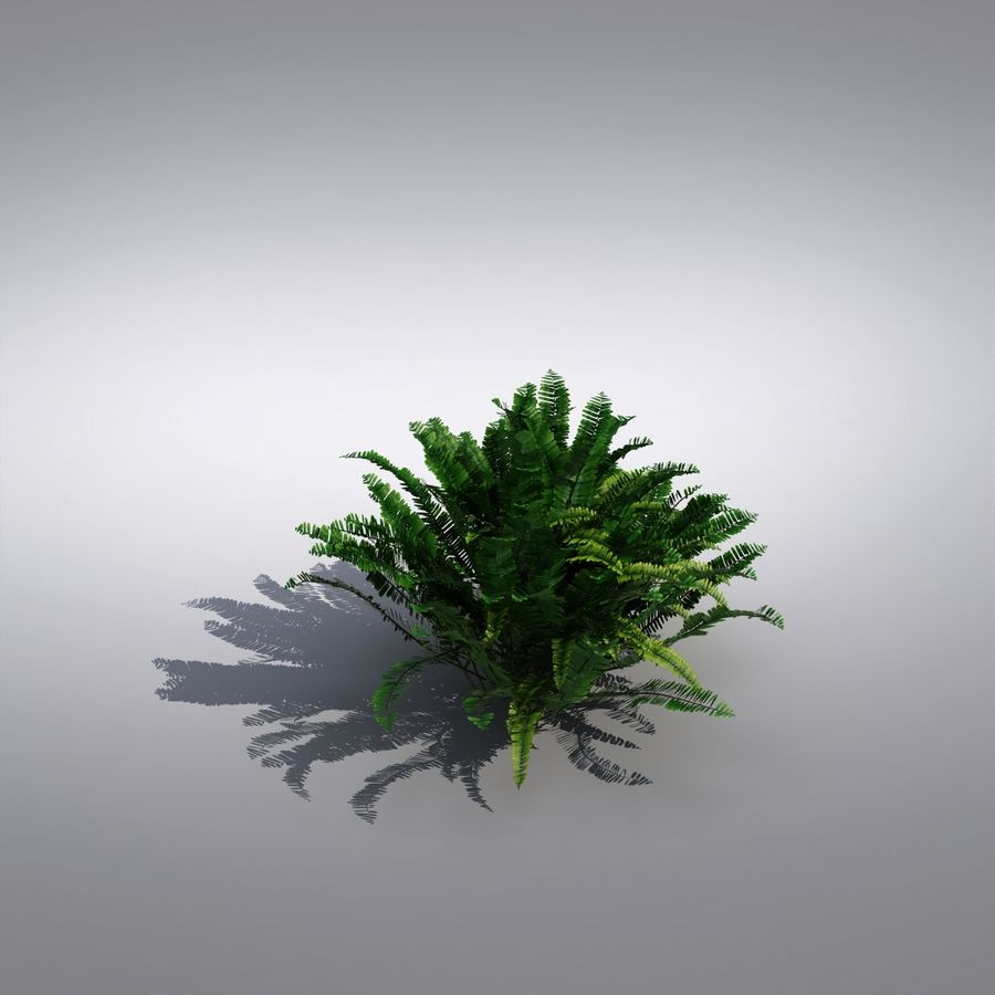 Bush Plant royalty-free 3d model - Preview no. 3