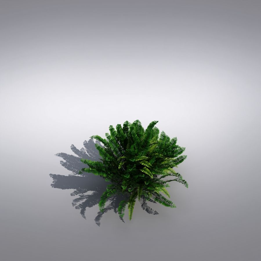 Bush Plant royalty-free 3d model - Preview no. 4