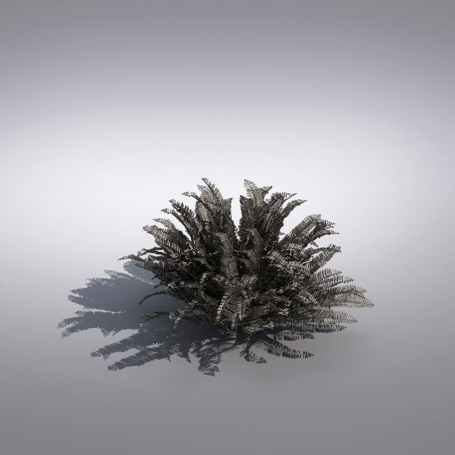 Bush Plant royalty-free 3d model - Preview no. 6