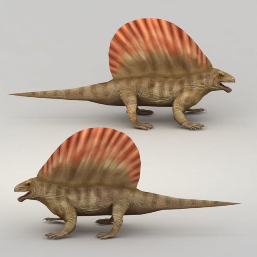 Edaphosaurus rigged royalty-free 3d model - Preview no. 4