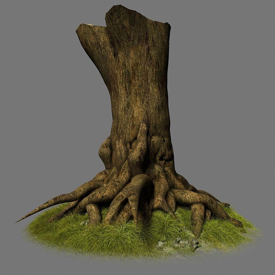 Korzenie drzew royalty-free 3d model - Preview no. 2
