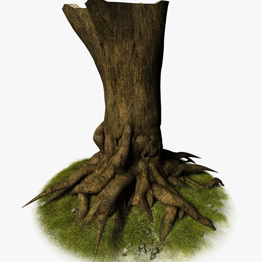 Korzenie drzew royalty-free 3d model - Preview no. 4