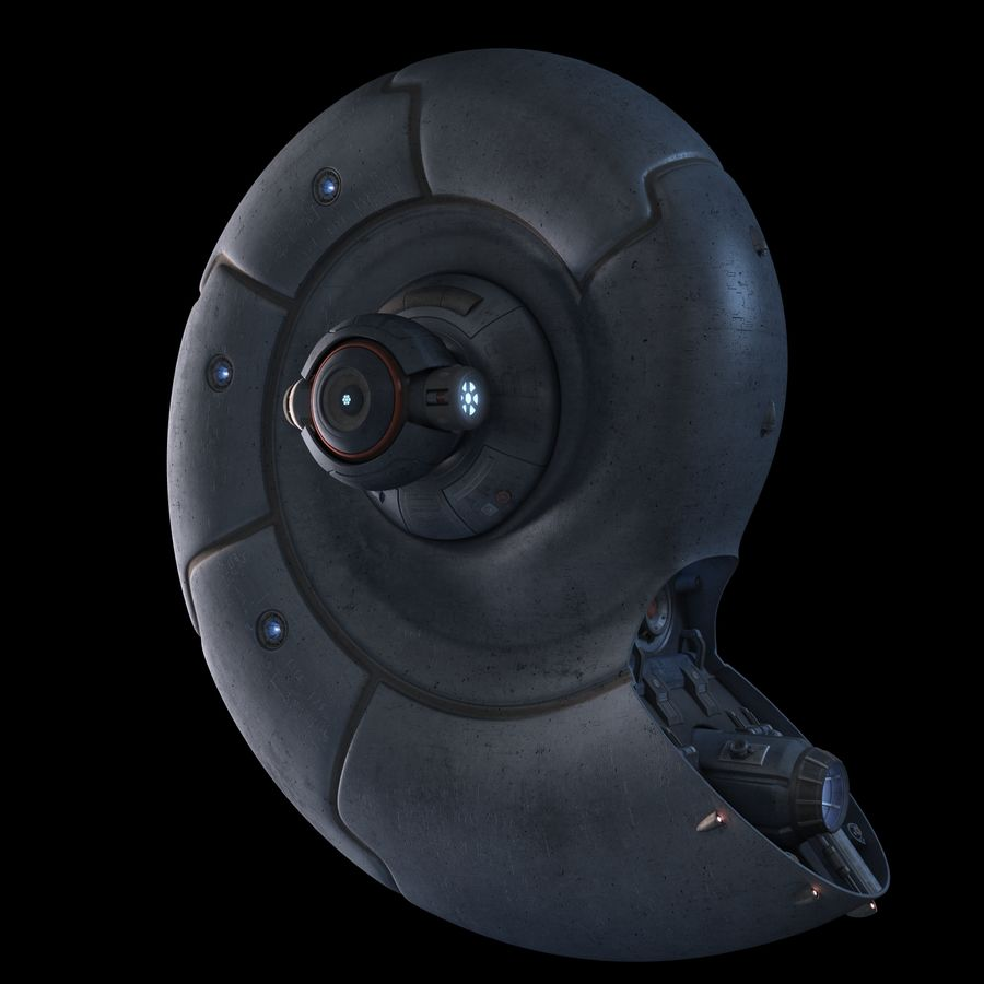 Nautilus royalty-free 3d model - Preview no. 2