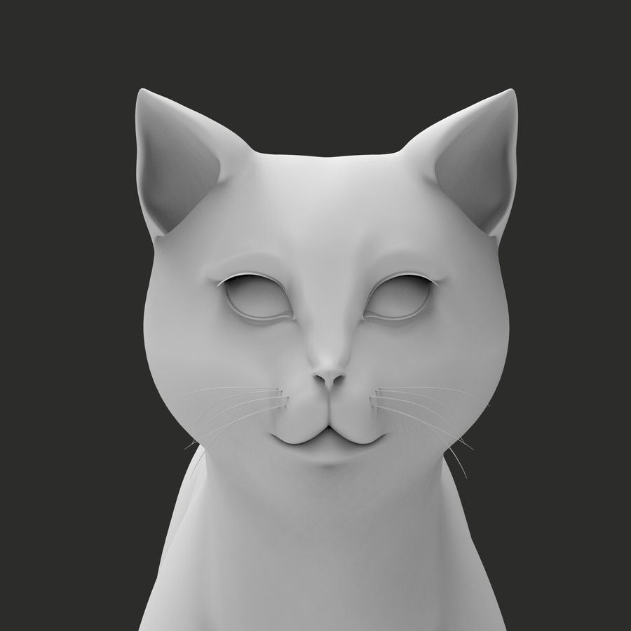 GATTO royalty-free 3d model - Preview no. 11