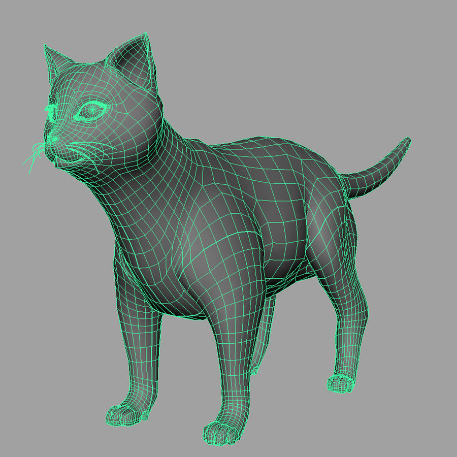 CAT royalty-free 3d model - Preview no. 4