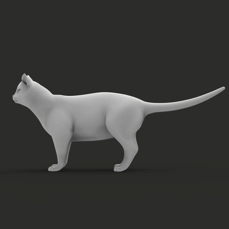 GATTO royalty-free 3d model - Preview no. 5