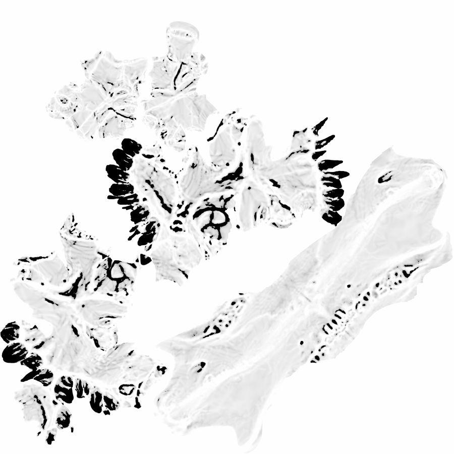 Jawbones 및 잇몸 해부학을 가진 인간의 치아 royalty-free 3d model - Preview no. 1