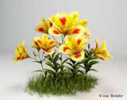 Alstroemeria 꽃 3d model