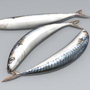 沙丁鱼 3d model