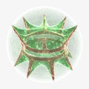 Placoderm algae 3d model