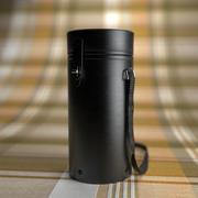 Nikon Fall 3d model