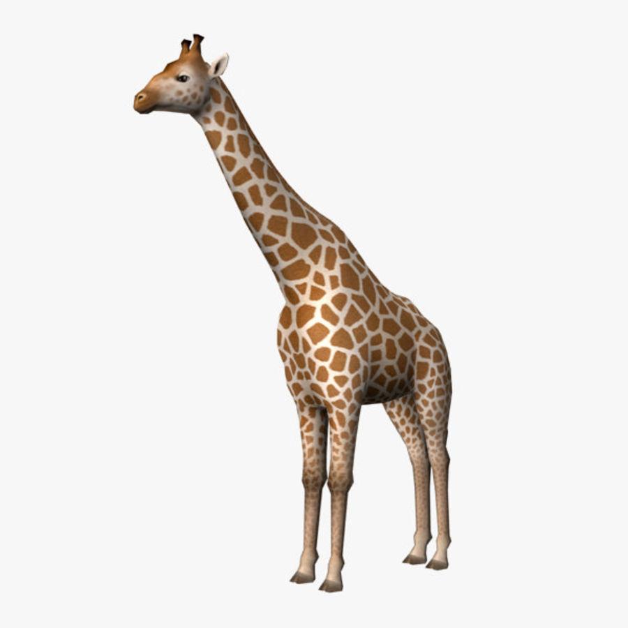 长颈鹿 royalty-free 3d model - Preview no. 1