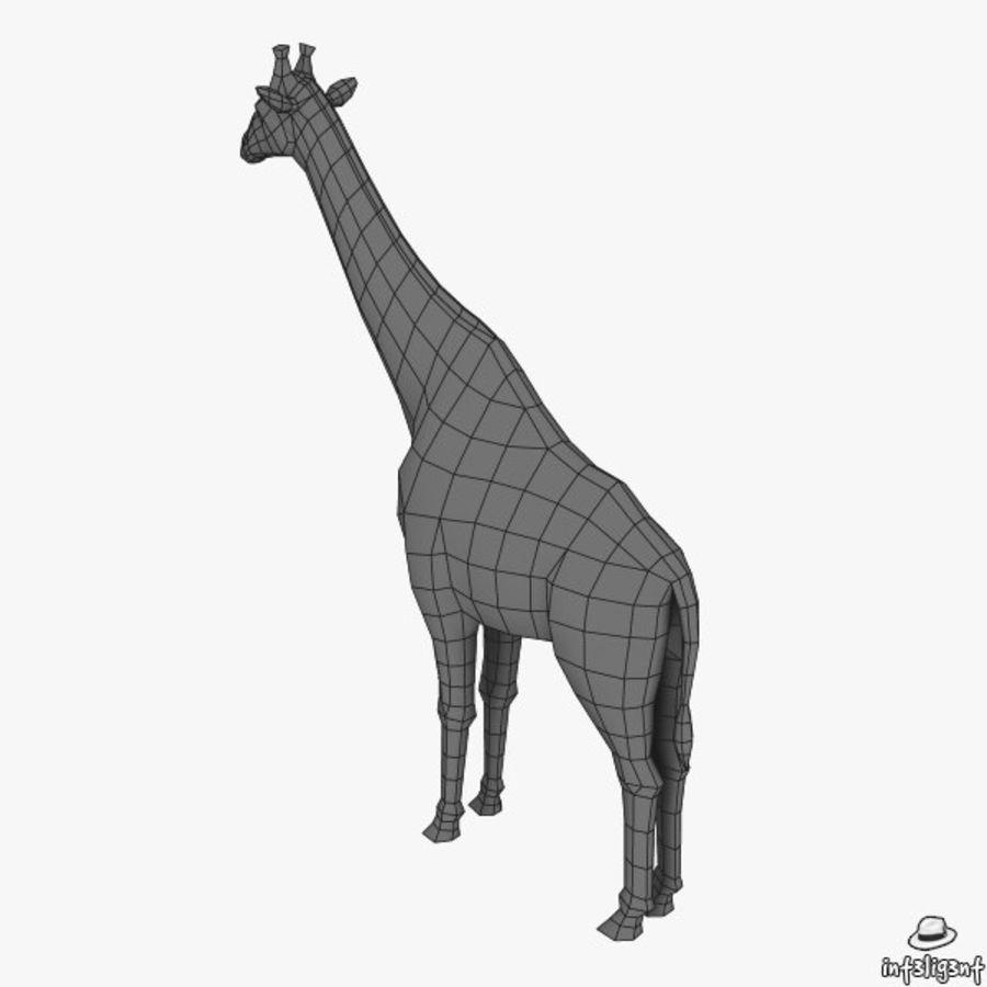 长颈鹿 royalty-free 3d model - Preview no. 8
