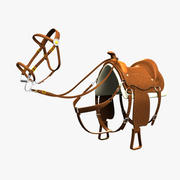 Western Saddle & Bridle 3d model
