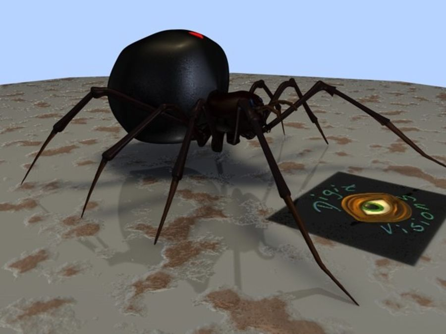 Spider- Black-Widow royalty-free 3d model - Preview no. 7