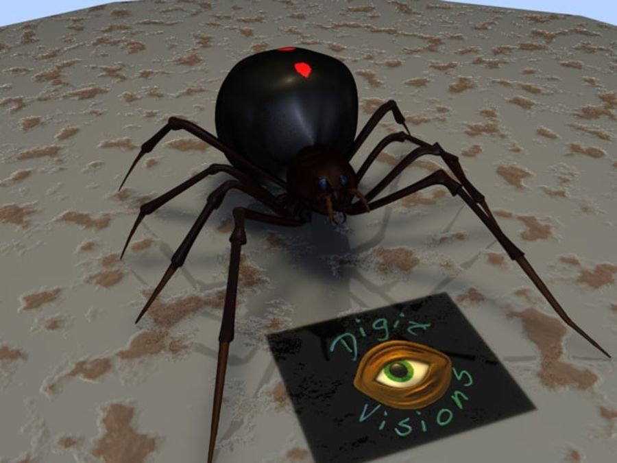 Spider- Black-Widow royalty-free 3d model - Preview no. 6