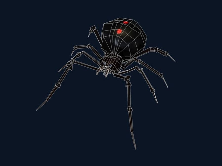 Spider- Black-Widow royalty-free 3d model - Preview no. 3