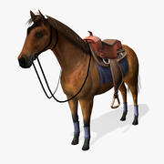 Modelo 3D de caballo en tiempo real modelo 3d