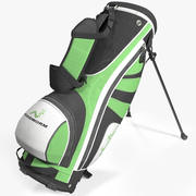 Golf Bag Woodworm 3d model