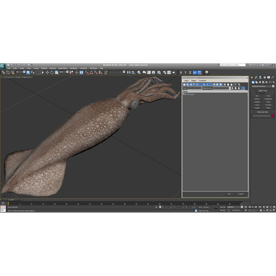 Fresh Squid royalty-free 3d model - Preview no. 27