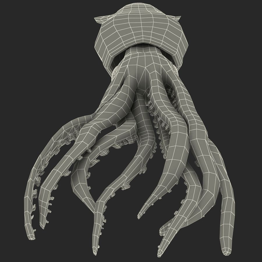 Fresh Squid royalty-free 3d model - Preview no. 16