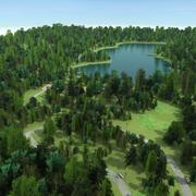 Arbres d'étang de Forest Park 3d model