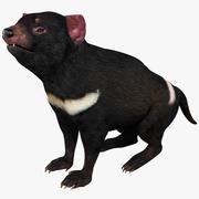 Pose 2 do diabo da Tasmânia 3d model