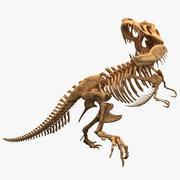 Dinosaur T-Rex Bones 3d model
