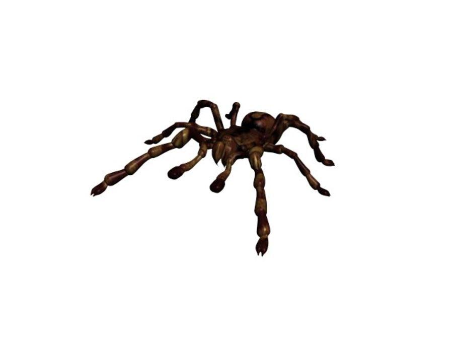 Tarantula royalty-free 3d model - Preview no. 5
