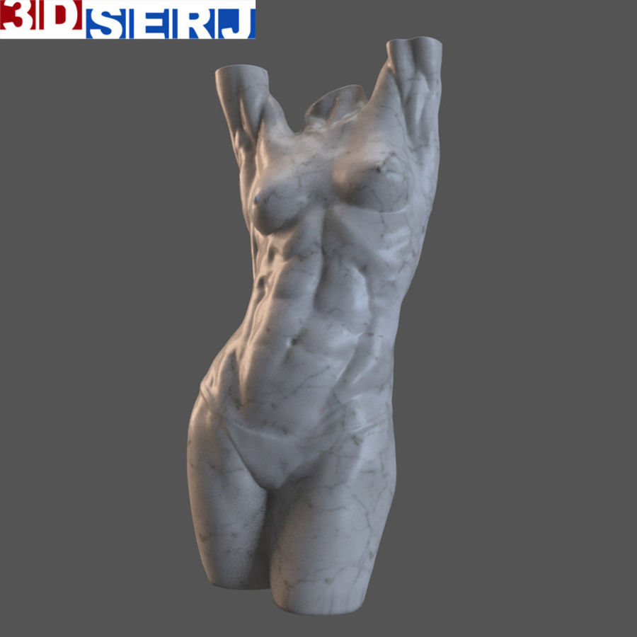 body female royalty-free 3d model - Preview no. 1