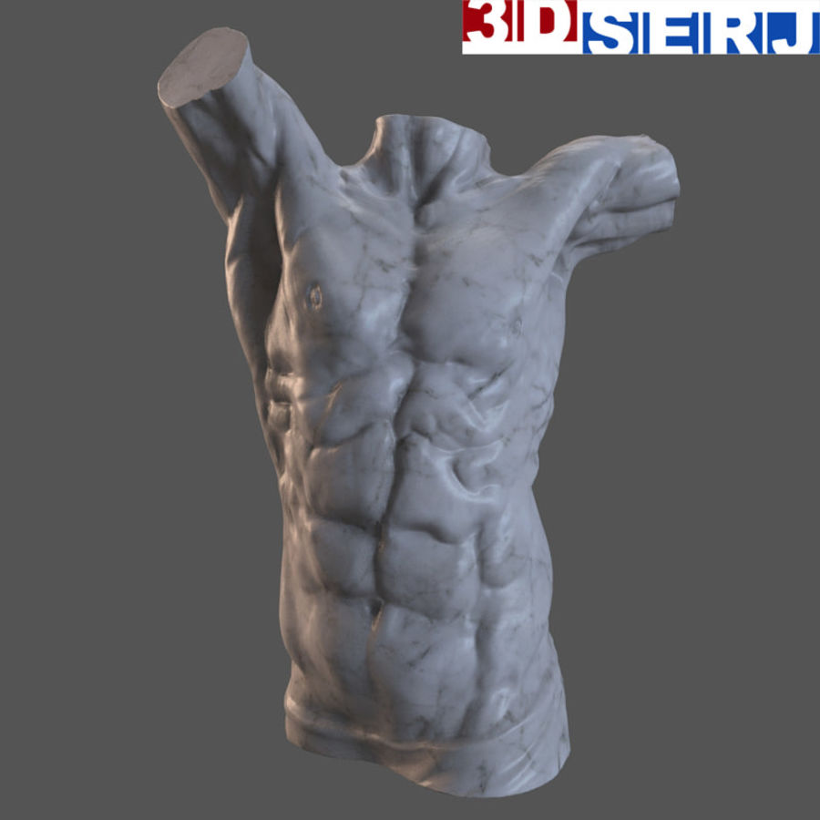 身体的男人 royalty-free 3d model - Preview no. 1