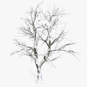 雪平原落叶树 3d model