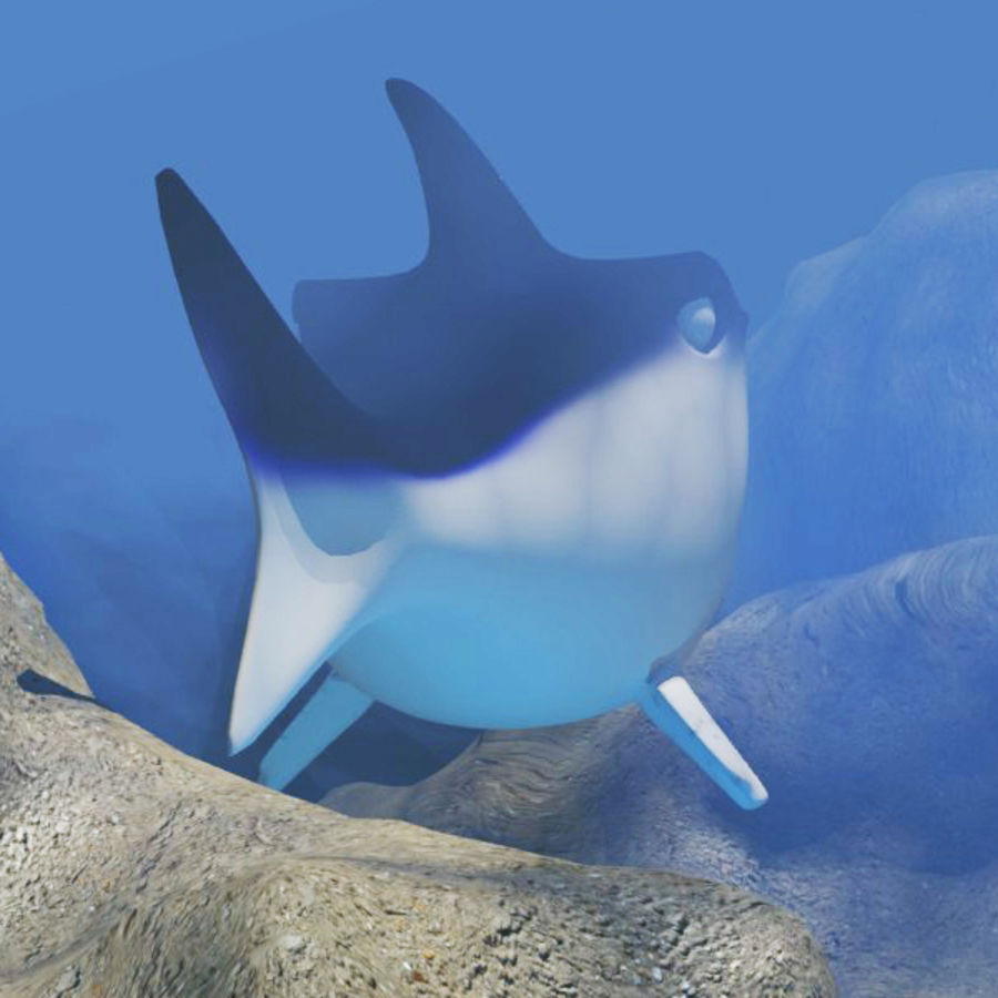 Chubby Shark Cartoon royalty-free 3d model - Preview no. 4