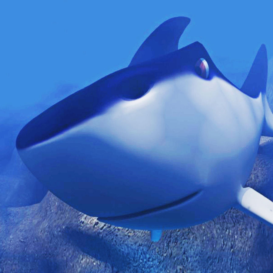 Chubby Shark Cartoon royalty-free 3d model - Preview no. 6
