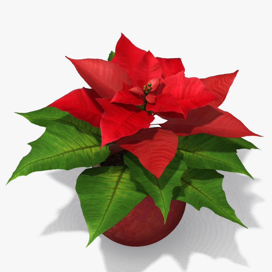 Stella Di Natale Cartamodello.Stella Di Natale Modello 3d 39 Max Obj Fbx Free3d