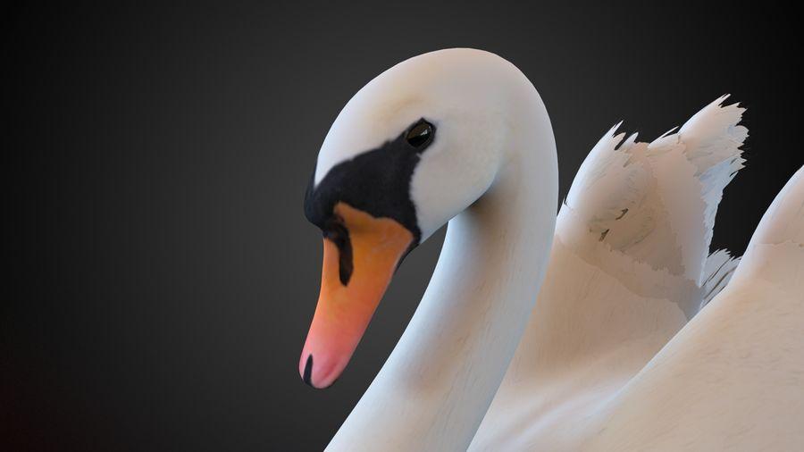 лебедь royalty-free 3d model - Preview no. 4