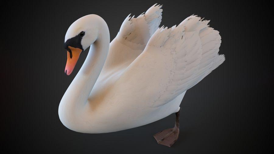 лебедь royalty-free 3d model - Preview no. 2