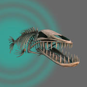 skeleton fish 3d model