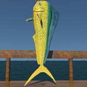 돌고래 3d model
