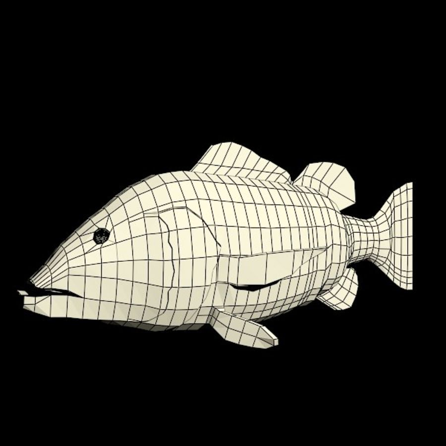 Speckled Peacock Bass royalty-free 3d model - Preview no. 5