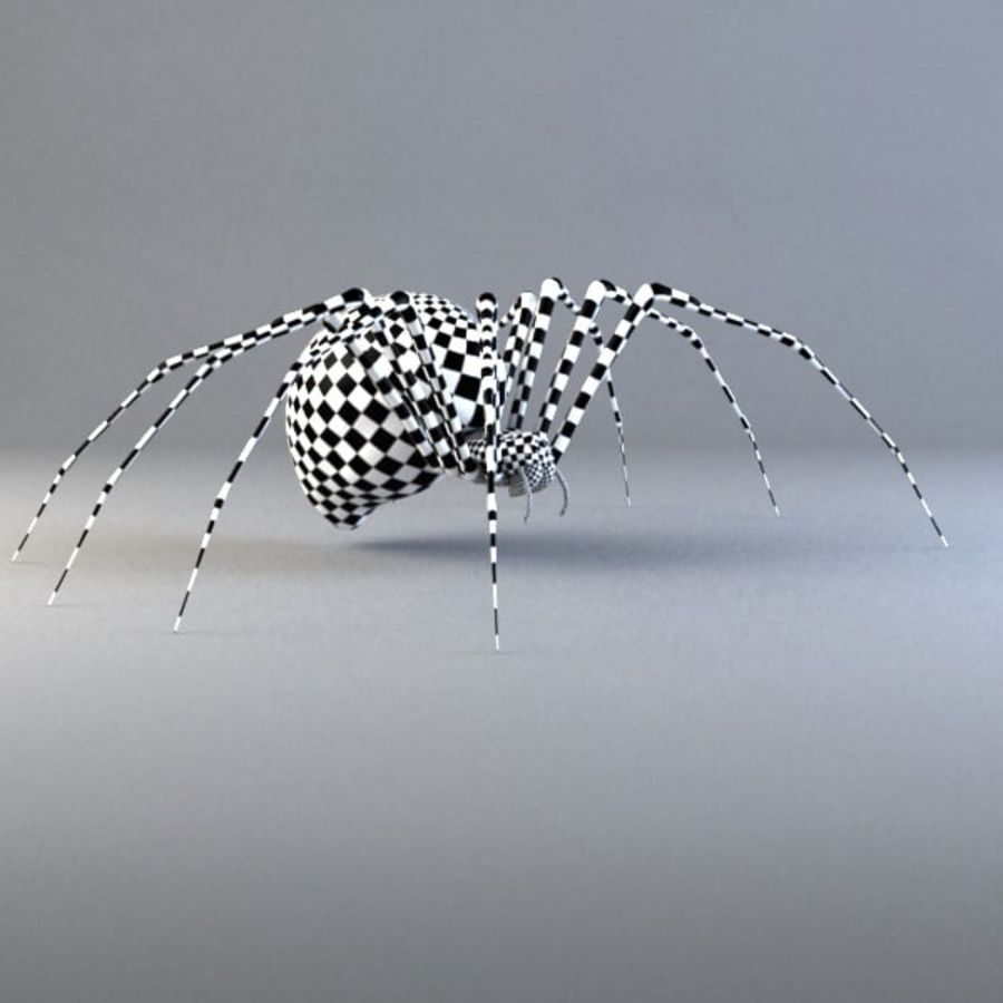 Spider-orb spider royalty-free 3d model - Preview no. 10