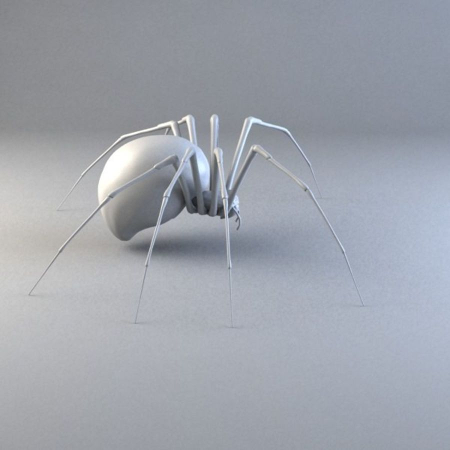 Spider-orb spider royalty-free 3d model - Preview no. 4