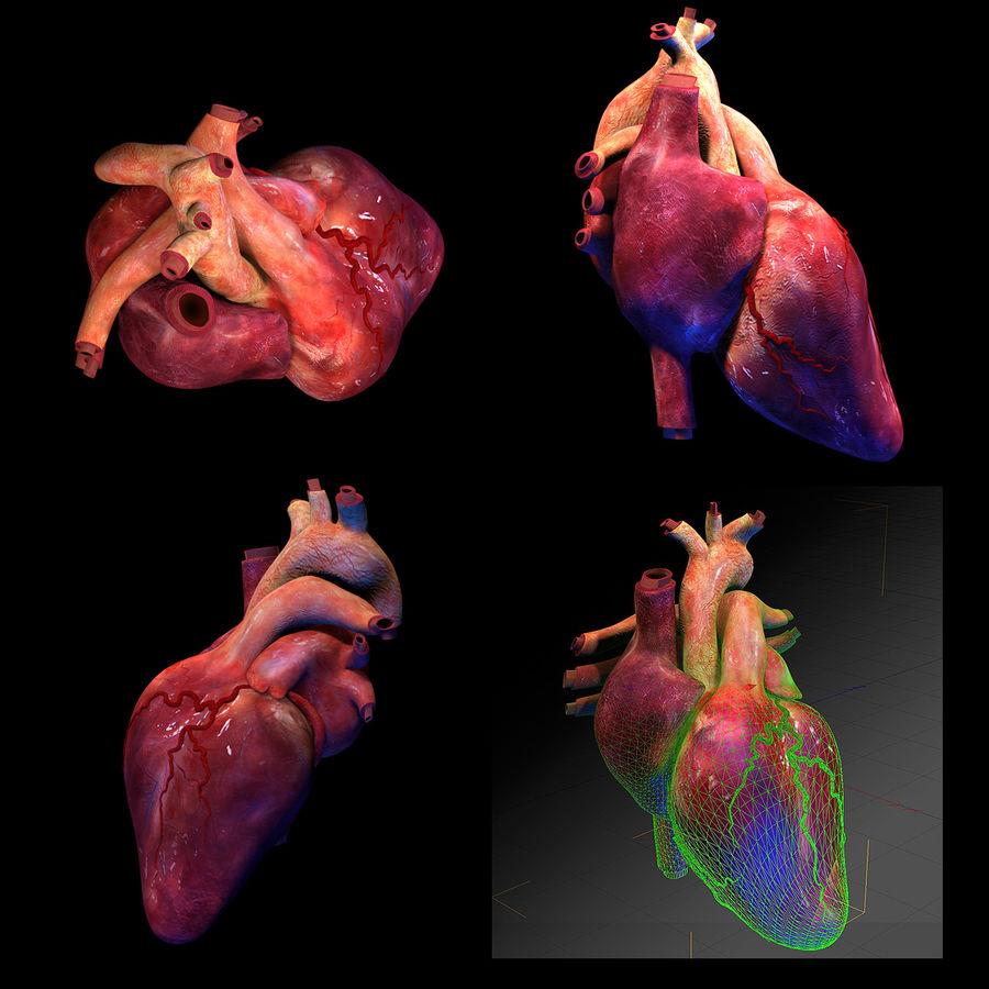 Heart Pro Hareketli Dokulu royalty-free 3d model - Preview no. 1